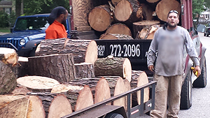 Firewood sales and delivery